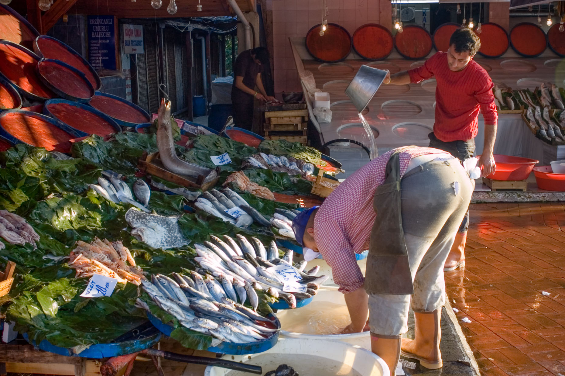 Portrait of fish mongers in open market in Istanbul Turkey at sunrise.