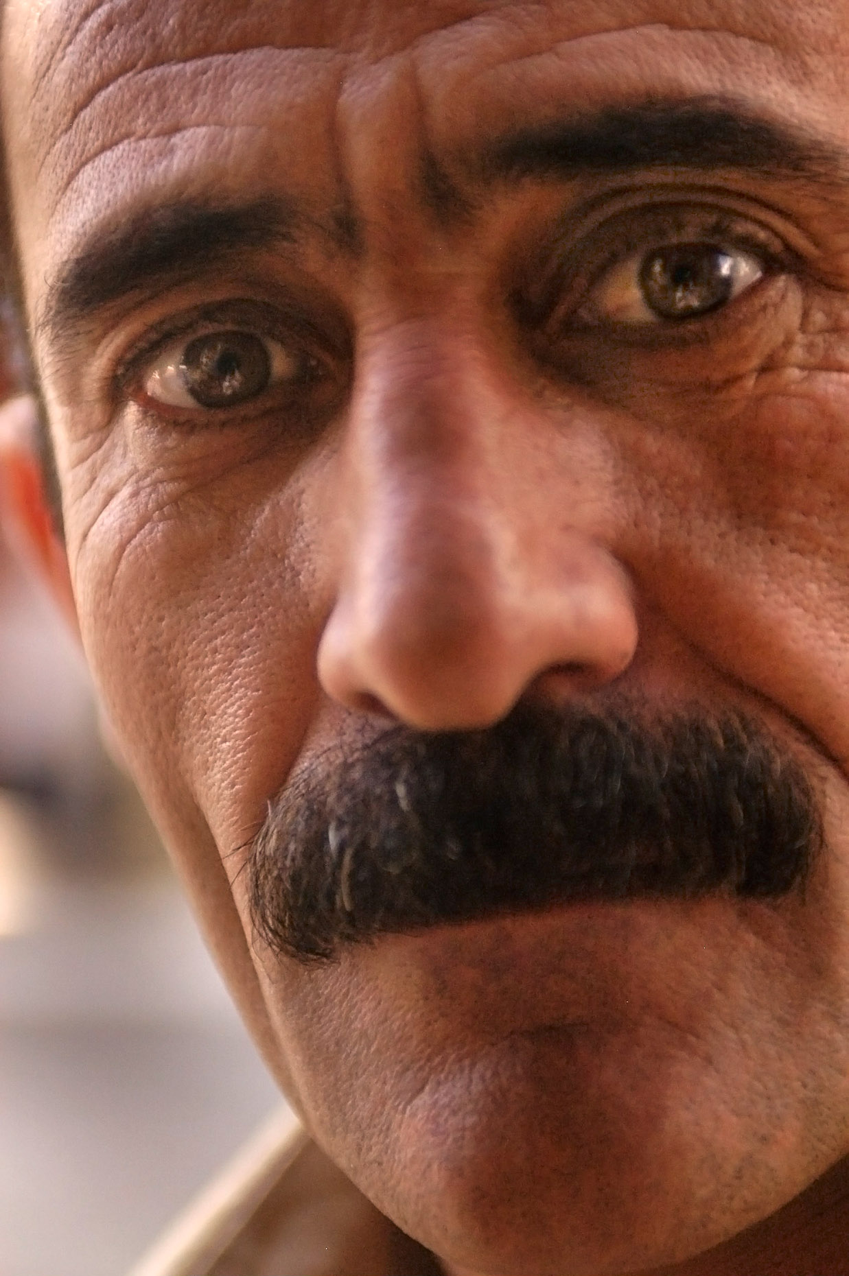 Close up portrait of Kurdish man, who is a carpet and kilim vendor. Van Turkey.