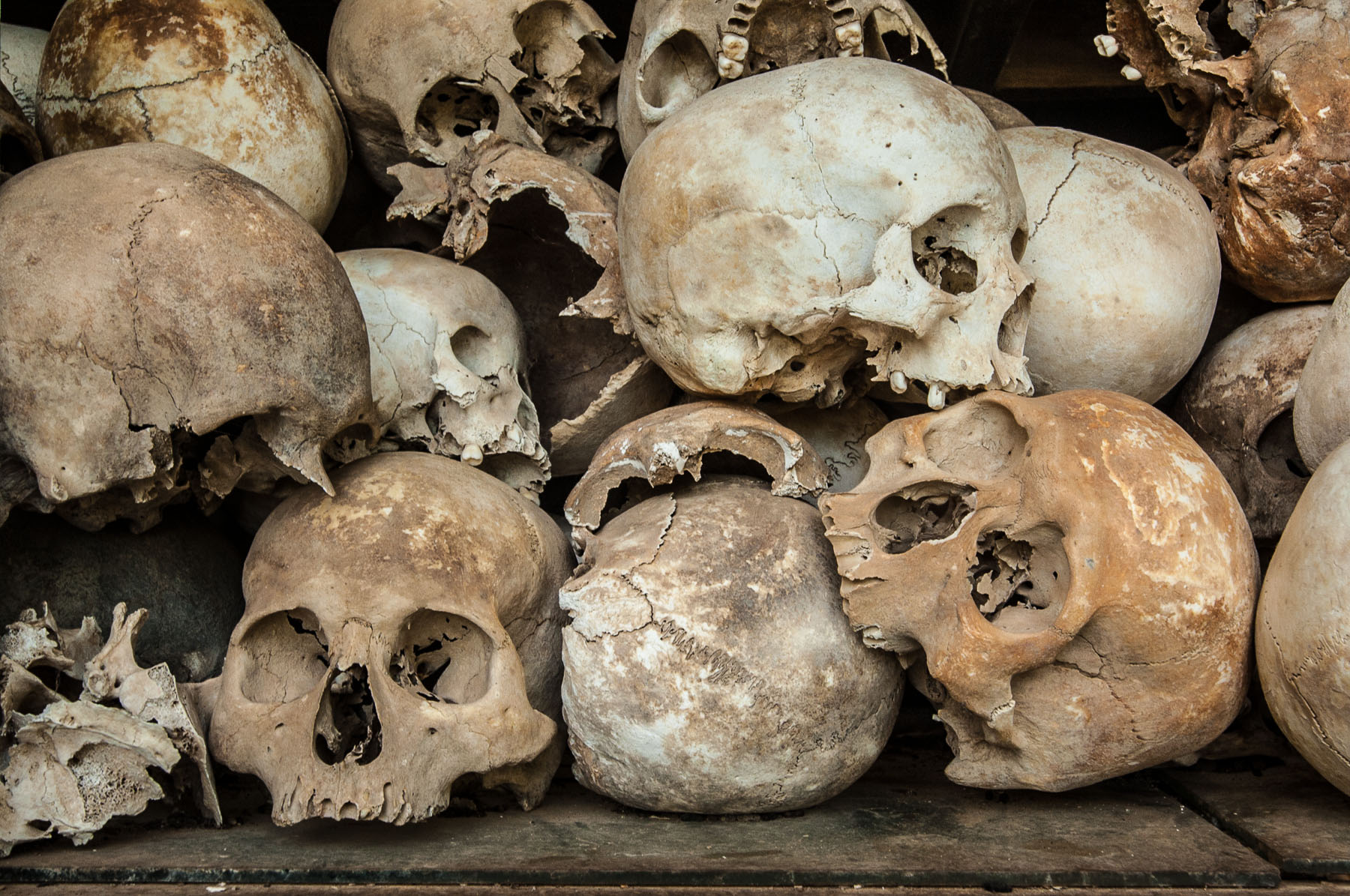 Skulls of Khmer Rouge prisoner victims, Killing Fields or Choeung Ek Cambodia.